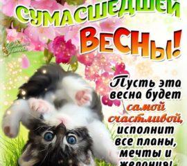 Красивая открытка весна