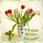 Открытка тюльпаны милой красотке