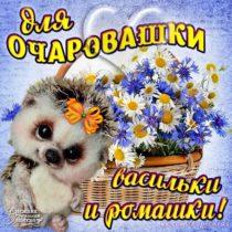 Для очаровашки корзина цветов
