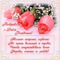 картинки розы