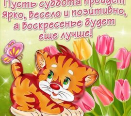 Позитивная открытка Суббота